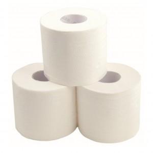 EcoGem Unwrapped Toilet Tissue Recycled 2 Ply 400sh