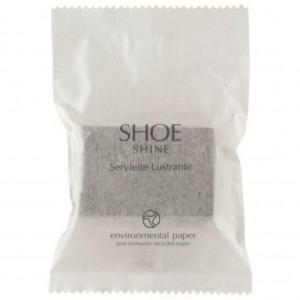Eco Fresh Shoe Sponge In Sachet 250