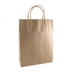 Brown Paper Bag With Handles Small 250