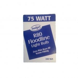Light Bulbs 240v 75w Flood Screw