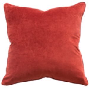Montpellier Velvet Cushion 53x53cm